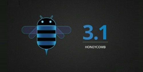 Honeycomb31