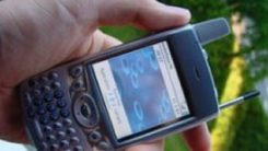 Palm Treo 600 review: palm Treo 600 review