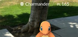 Eén week Pokémon GO; dwalende nachtbrakers, gevonden lichamen en rokende servers