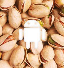 We gaan de volgende naam van Android versie P hier niet verklappen, maar dit plaatje zegt hopelijk genoeg
