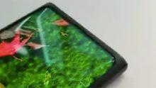 Oppo en Xiaomi tonen mobiel met selfiecamera achter het scherm