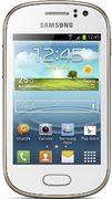 Samsung Galaxy Fame S6810 (GT-S6810PWNDBT)